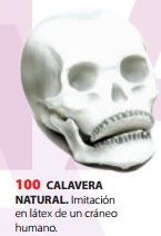 CALAVERA NATURAL PARA DECORACIÓN HALLOWEEN